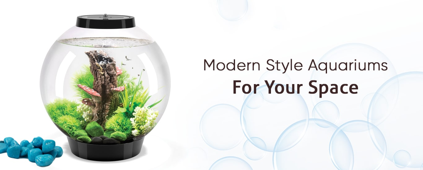 Mayur Fish Aquarium - Aquariums and Fish Tank Dealer in Rishikesh HO, Rishikesh