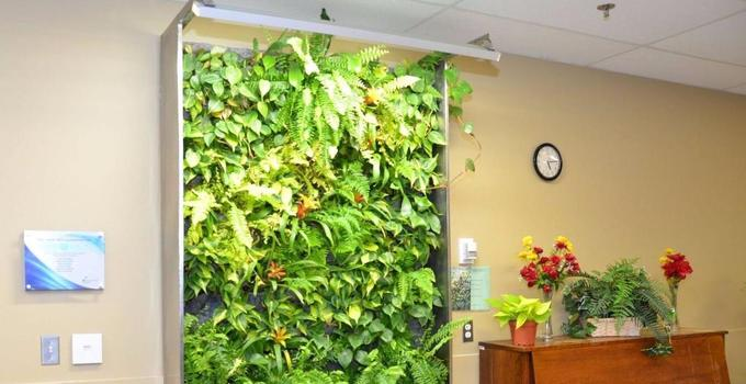 Vertical Gardening Services in Bangalore