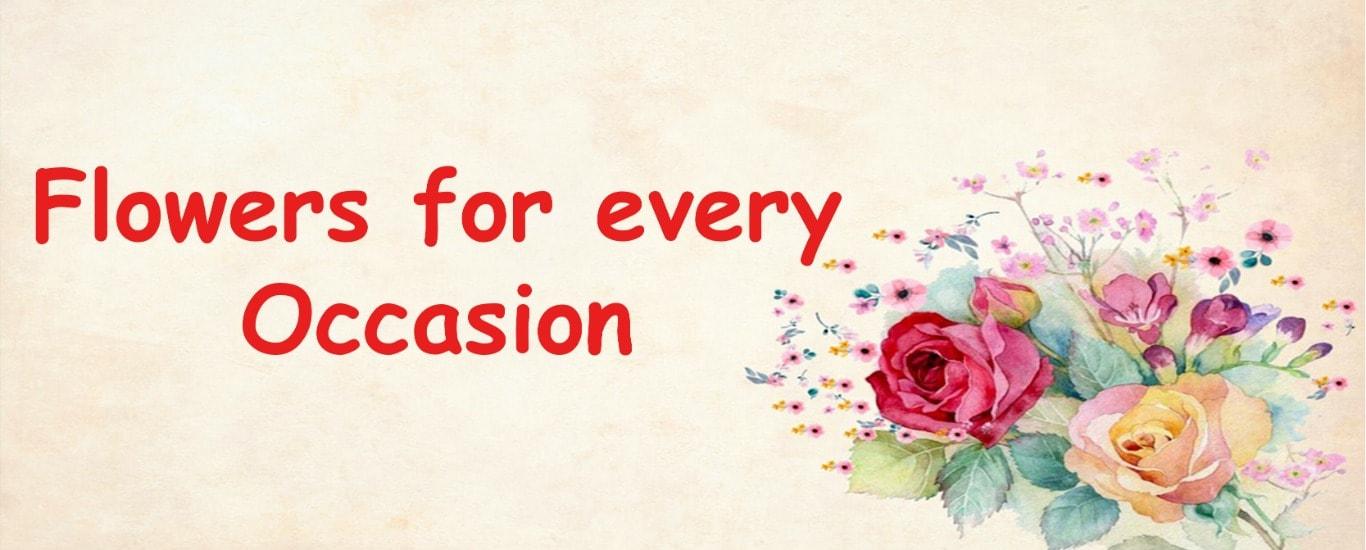 send flowers to india, send flowers to punjab, send flowers to jalandhar, flowers in india, flowers in jalandhar, flowers in punjab, florist in india, florist in punjab, florist in jalandhar