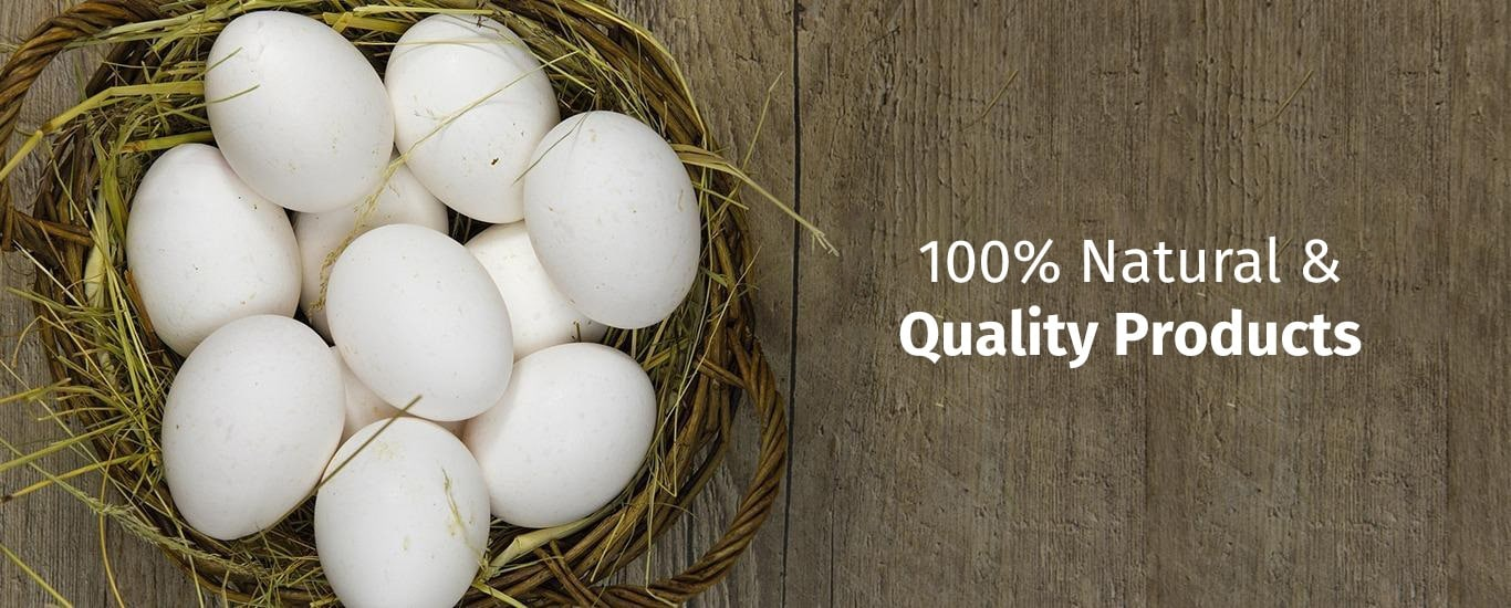 White Chicken Food - Poultry and Products Supplier in Camp, Pune